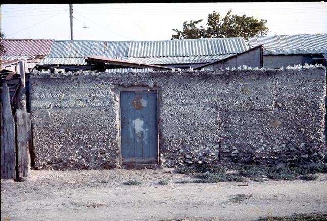 Muro externo de una casa de Los Roques (hace treinta años) construido con hormigón de cirial. Obsérvense las conchas de Guarura (o botuto) en la parte inferior.